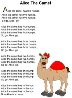 I chose this rhyme because I remember it from when I was little as it has a lot of repetition. and you can do this rhyme on your hands or cut out a camel. Alice the Camel printable (lots of amazing crafts and printables on this site) Preschool Circus, Preschool Music, Preschool Class, Preschool Lessons, Songs For Toddlers, Kids Songs, Zoo Songs, Silly Songs, Kids Music