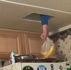 i dont know if some i dont know if someones stealing the bananas or setting them down but i cant decide which one is funnier Stupid Memes, Stupid Funny, Dankest Memes, Funny Memes, Hilarious, Jokes, Funny Laugh, Reaction Pictures, Funny Pictures