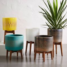 ✨New colours✨ Inspired by the clean silhouettes of the 1950s and '60s, our Mid-Century Turned Leg Planter stands on tapered, solid wood legs with a glazed, ceramic bowl.