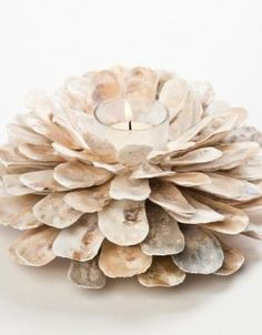 Oyster Shell Candle Holder                                                                                                                                                                                 More