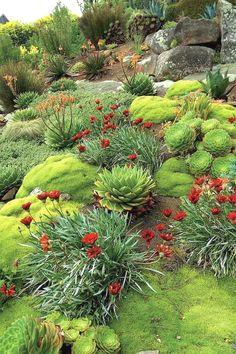 Nice 80 Front Yard Rock Garden Landscaping Ideas https://insidecorate.com/80-front-yard-rock-garden-landscaping-ideas/ #modernyardflowerbeds #LandscapingIdeas