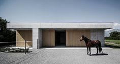 Horse clinic by Marte.Marte Architekten; http://www.livegreenblog.com/materials/horse-clinic-by-marte-marte-architekten-11925/