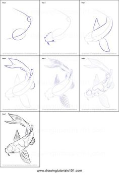 How to Draw a Koi Fish Printable Drawing Sheet by DrawingTutorials101.com: