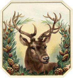 Free Vintage Christmas Image Deer