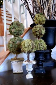 Cover faux topiaries with reindeer moss for a fluffier more natural looking one. Moss Topiary
