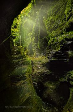 lydford gorge, dartmoor #nature                                                                                                                                                     More