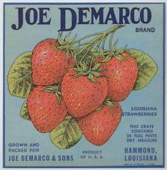 Vintage Strawberry Labels | JOE DEMARCO Vintage Strawberry Crate Label (VS070)