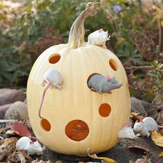 mouse house pumpkin idea - just carve holes in pumpkin and add toy mice and you can even spray paint the pumpkin to look like swiss cheese.