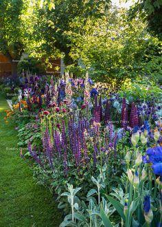 The Morgan Stanley Healthy Cities Garden Cottage Garden Plants, Cottage Garden Design, Back Gardens, Outdoor Gardens, City Gardens, Garden Borders, Fence Garden, Plantation, Dream Garden