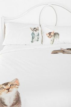 Crazy Cat Lady bedding. Hehe.