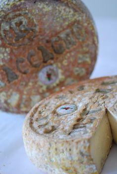 Toma Maccagno - italian cheese