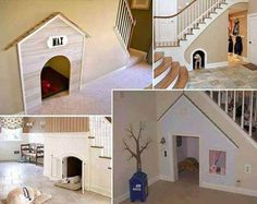 dog house idea
