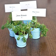 Start saving your bottle caps for making these sweet planters, which also double as wedding favors! Here's how to make them.  Photo: Sarah Lipoff