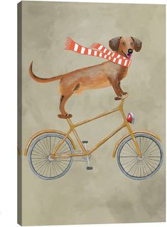 iCanvas Dachshund on Bicycle II by Coco de Paris (Giclee Canvas)