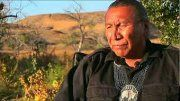 Chief Arvol Looking Horse Speaks of White Buffalo Prophecy.flv