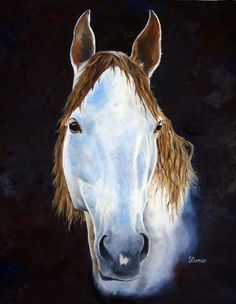 """""""Long Tall Horse"""" 24""""x30"""" Oil on Gallery-wrapped Canvas. For Sale"""