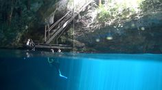 El Pit is one of Mexico's Best Cenote Dives. The Pit is at 119 m the deepest cenote in the State of Quintana Roo. Dancing sun rays penetrate to 27 m where th. Underwater, Diving, Mexico, Outdoor Decor, Scuba Diving, Under The Water