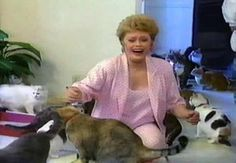 Dearly departed Rue McClanahan hosted this well-intentioned 1990 video for new cat owners. Rue does an admirable job explaining cat care but loses control when some of her ornery cast of felines stop Rue Mcclanahan, Old Video, Golden Girls, Livestock, Cat Lovers, Kitty, Cats, Squad Goals, Animals