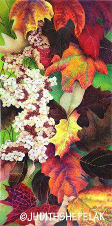 Colored Pencil-Judith Shepelak