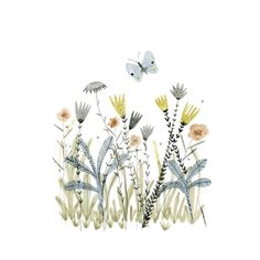 illustration, design, drawing, nature, flowers, butterfly, summer, watercolour