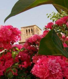 Un village où l'on voit la vie «en roses»./Photo DDM.
