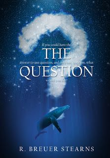 heidi's wanderings: The Question Book Review
