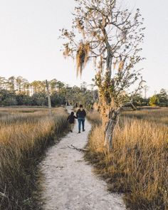 Hiking in Skidaway Island State Park, Savannah, Georgia. Great place to camp or just spend some time in nature. Savannah Georgia, Savannah Chat, Emotional Photography, Rv Campgrounds, Great Places, State Parks, Road Trip, Hiking, Country Roads