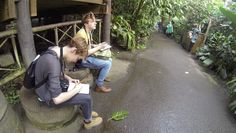 Eden Project - Cornwall Residential 2014