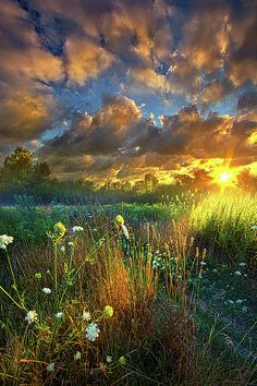 'Heaven Knows' -Phil Koch