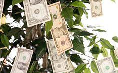 9 essentials for a kickstarter campaign.  money-tree-600