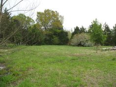 This old home site has plenty to offer from the fruit trees that were planted with love to the beautiful flowering plants that add to the charm of this 6.06 acres. There is a large shop building with concrete floors and power. Build or place your manufactured home here. Water and electric are located on the property along with an old septic system. Most of the property is fenced. Equal Housing Opportunity in Pleasant Plains AR