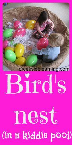 Preschool book club. Books about birds for preschoolers. Birds theme for preschool.