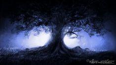 Blue Night Tree Fog wallpaper from Dark wallpapers