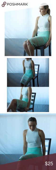 P e n c i l    S k i r t Sea-Foam - Pencil skirt with sheer mesh detailing. Layer with a sweater for winter or a crop top for spring! 🌊 sheer mesh detailing - NWT - 55% nylon - 45% cotton (self) - 100% polyester (contrast) - 100% polyester (lining) Skirts Pencil