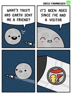 Safely Endangered Comics Filled With Dark Humor That Will Make You Laugh Loud Stupid Funny, Funny Cute, Funny Texts, Funny Jokes, Funny Gifs, Epic Texts, Funny Minion, Funny Stuff, Cartoon Memes