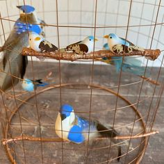 Your place to buy and sell all things handmade Light Shades, Shades Of Blue, Cage Light, Budgies, Garden Gates, Bird Cage, Door Wreaths, Home Gifts, Are You Happy