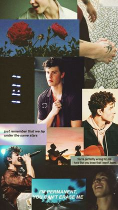 Read 🌻wallpaper Shawn mendes🌻 from the story ↳ᴘᴀᴄᴋꜱ↲ by mrvelnatural (* 𝓮𝓵 𝓶𝓪𝓻𝓲𝓪𝓬𝓱𝓮 *) with reads. Shawn Mendes Memes, Shawn Mendes Fofo, Shawn Mendes Imagines, Shawn Mendes Wallpaper, Shawn Mendes Lockscreen, Daddy, Aesthetic Videos, New Quotes, Lyric Quotes