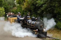 Ride through history on these historic zoo trains!