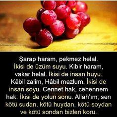 "@meraksiyon on Instagram: ""#insan#şarap #pekmez#kibir #vakur#istanbul#konya #şanlıurfa"" Love Diary, Wall Writing, Ritz Crackers, Beautiful Nature Wallpaper, Allah Islam, Words Worth, Meaningful Quotes, Cool Words, Istanbul"