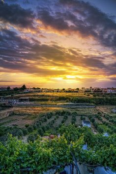 Olivares, Sevilla, España