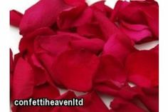 2 litre hot pink fuschia cerise real wedding confetti Real Rose Petals, Wedding Confetti, Rose Wedding, Real Weddings, Hot Pink, Flowers, Florals, Flower, Bloemen