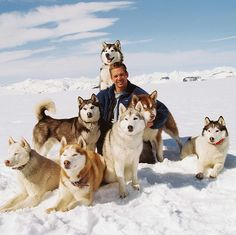 Paul Walker and the beautiful dogs of Eight Below movie.