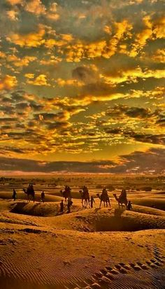 Desert Crossing.. Rajasthan, India