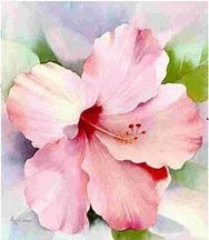 Image result for Watercolor Flowers for Beginners