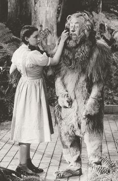 brothertedd:  The Wizard of Oz (1939)
