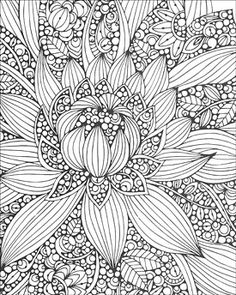 View more images from Creative Coloring - Botanicals : ArtistsClub.com