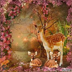 Familia hermosa Cute Kittens, Gifs, Good Night Blessings, Gif Animé, Moving Pictures, Kangaroo, Reindeer, Good Morning, Decoupage