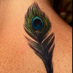 Peacock feather tattoo. My grandmother had these in her house for peace and good luck.