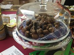 Truffle hunting experience in Italy