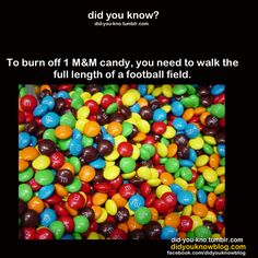 Therefore, I think that pretzel mnms are the best candy in the world. What do you think? The More You Know, Good To Know, Did You Know, Wtf Fun Facts, True Facts, Random Facts, Crazy Facts, Random Stuff, Bizarre Facts